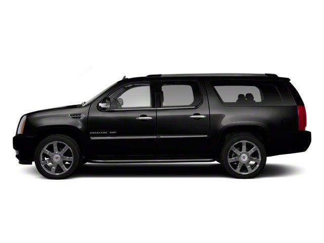 2010 Cadillac Escalade Esv Awd 4dr Premium In Edison Nj Cadillac